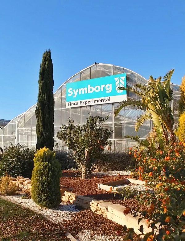 Symborg presenta en todo el mundo: 'BlueN', el biofertilizante que reduce el uso fertilizantes químicos