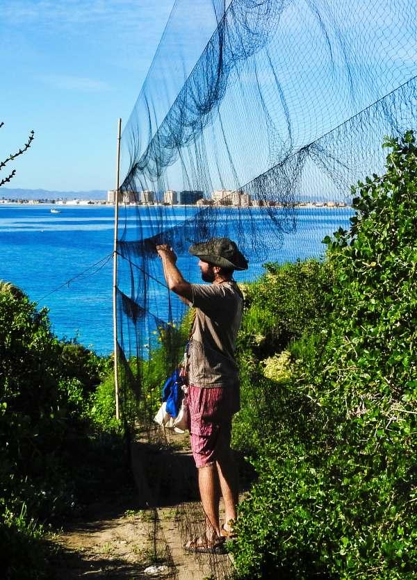 ANSE anilla 2400 aves migradoras en isla Grosa