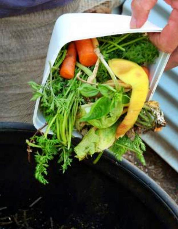 El desperdicio alimentario genera ingentes cantidades de CO2