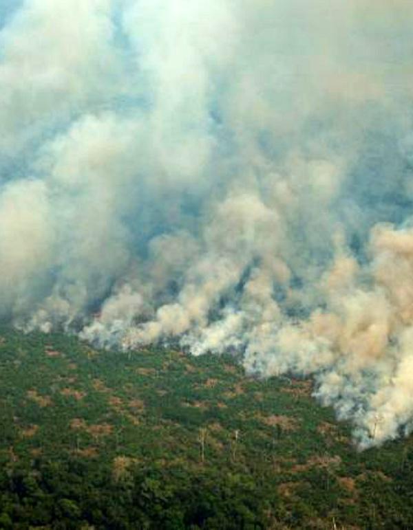 Brasil. Detenidos cuatro bomberos voluntarios por provocar incendios en el Amazonas