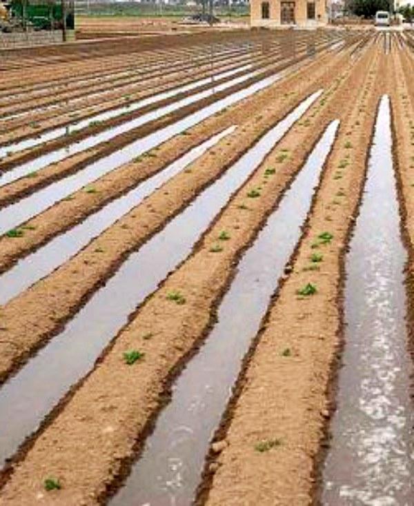 Kenia. Primera planta solar que transforma agua salada en agua potable