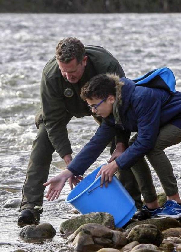 Cantabria, 6.000 juveniles de salmón para repoblar la especie en el Besaya