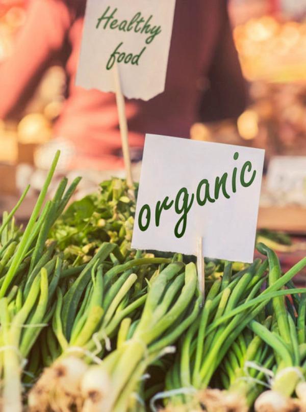 La alimentación ecológica es el mejor 'antídoto' contra la crisis climática