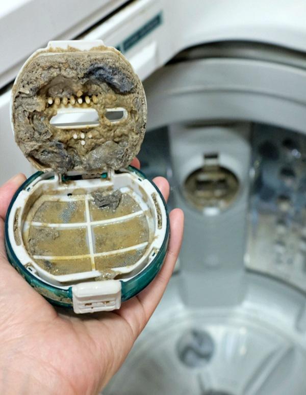 Lavadora, fuente de microbios