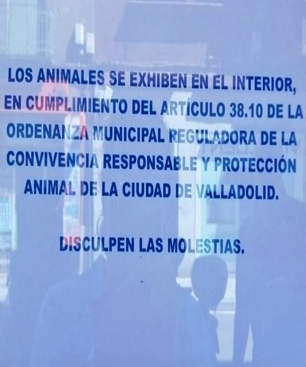 Castilla y León obliga a retirar animales de los escaparates al público