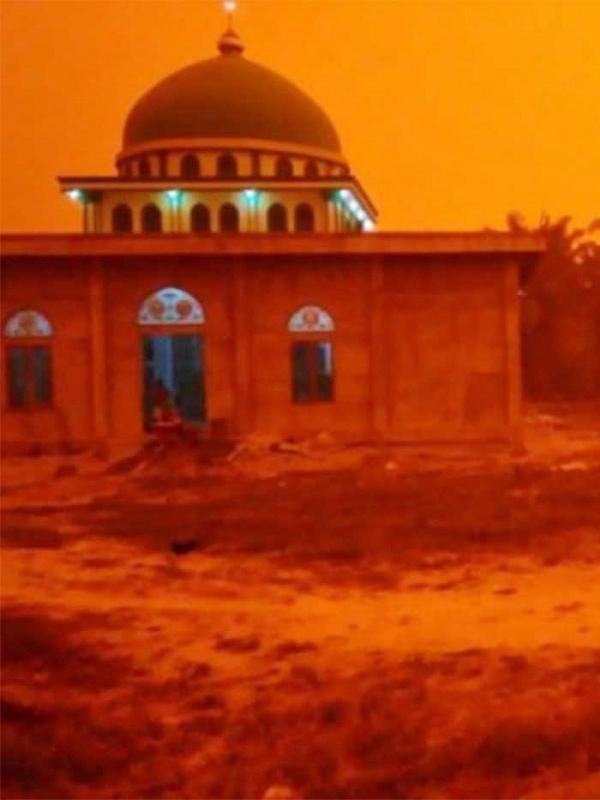 El papel de España en la ola de incendios en Indonesia
