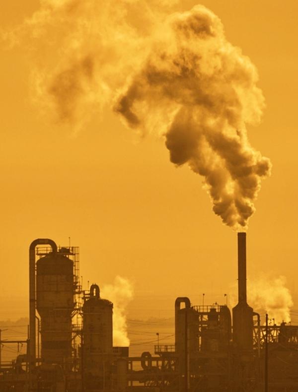 Los problemas ambientales deterioran una vida saludable