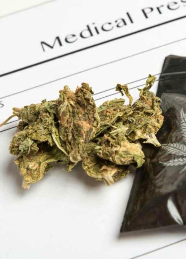 Cannabis medicinal, ¿para cuándo?
