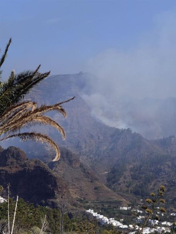 Ayudas económicas para restaurar las zonas afectadas por el gran incendio de Canarias