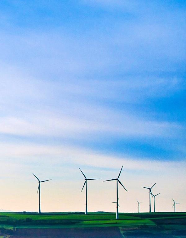 ecovatios suministrará energía 100% verde al Comité español de ACNUR para todas sus oficinas