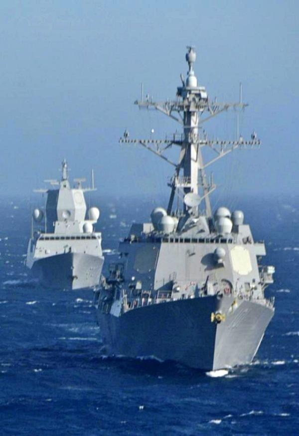 Las maniobras militares navales ponen en riesgo la vida de cetáceos