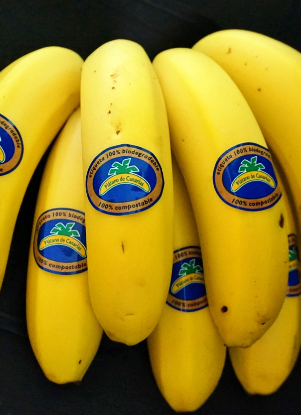 Plátano de Canarias se apunta a la 'Economía Circular'