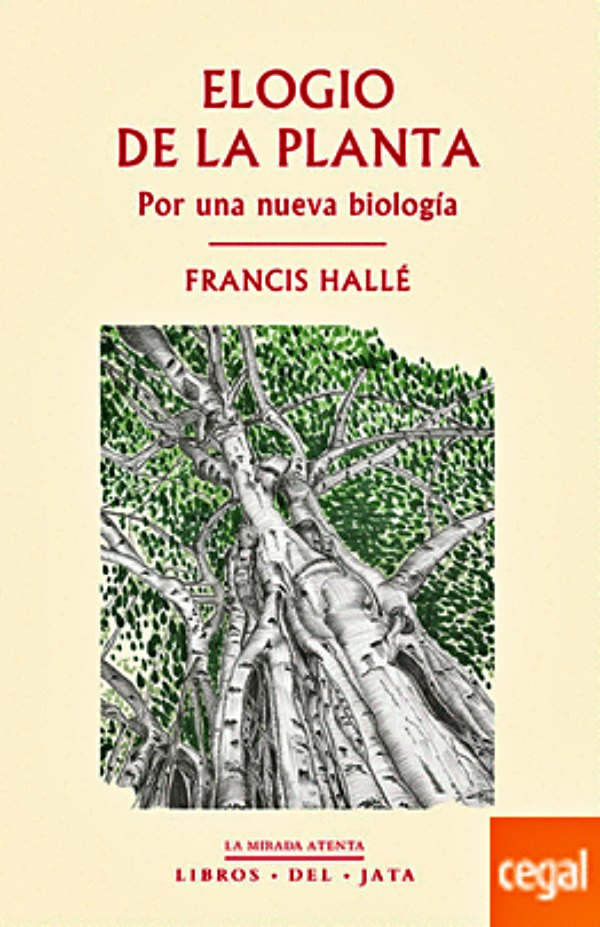 Primer Máster sobre Arboricultura Urbana, de la mano del biólogo francés Francis Hallé