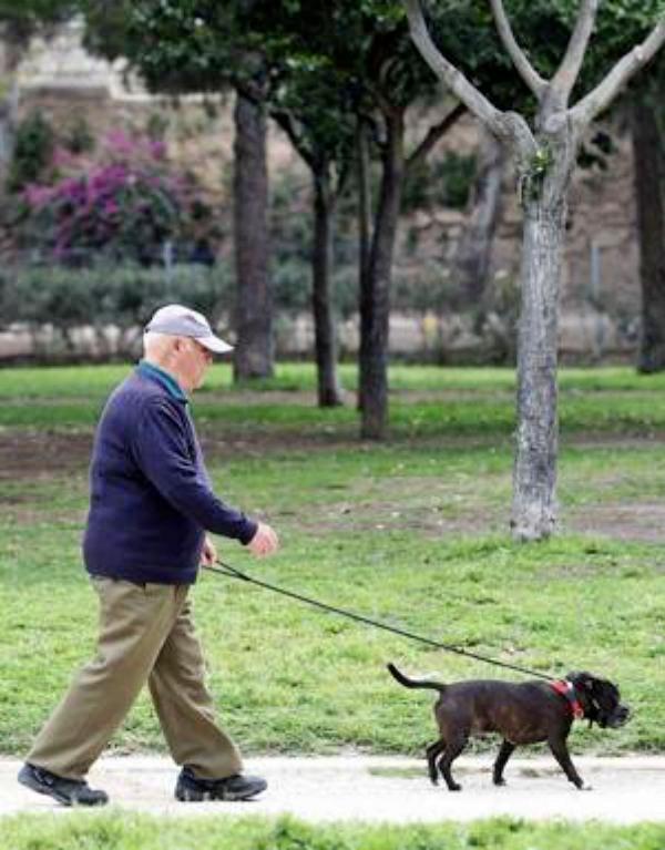 Asturias rechaza establecer una tasa animal anual