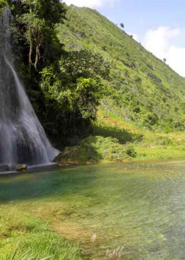Proyecto de restauración de ecosistemas forestales en Haití