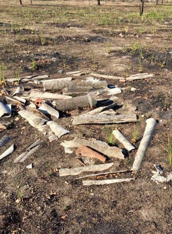 San Fernando - Coslada. Exigen la retirada de residuos del Bosque del Humedal de Coslada