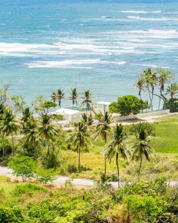 ISLANDS, el proyecto que une a nueve países del Caribe para combatir la contaminación