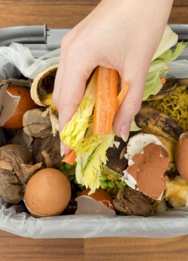 El sector agrario lucha contra el desperdicio de alimentos