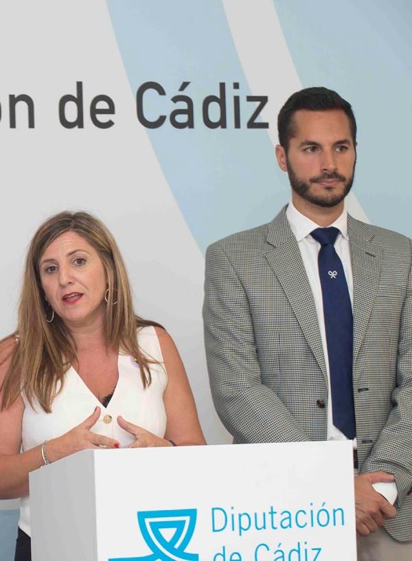 Ayuntamiento de Cádiz y Diputación se reúnen para abordar las estrategias de transición energética