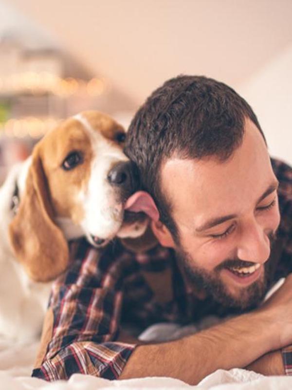 Haz ejercicio con tu perro en tu casa durante el confinamiento por el COVID-19