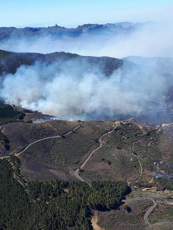 El fuego arrasó 9.535 hectáreas en los dos primeros meses del año, un 36,89% más que la media del decenio