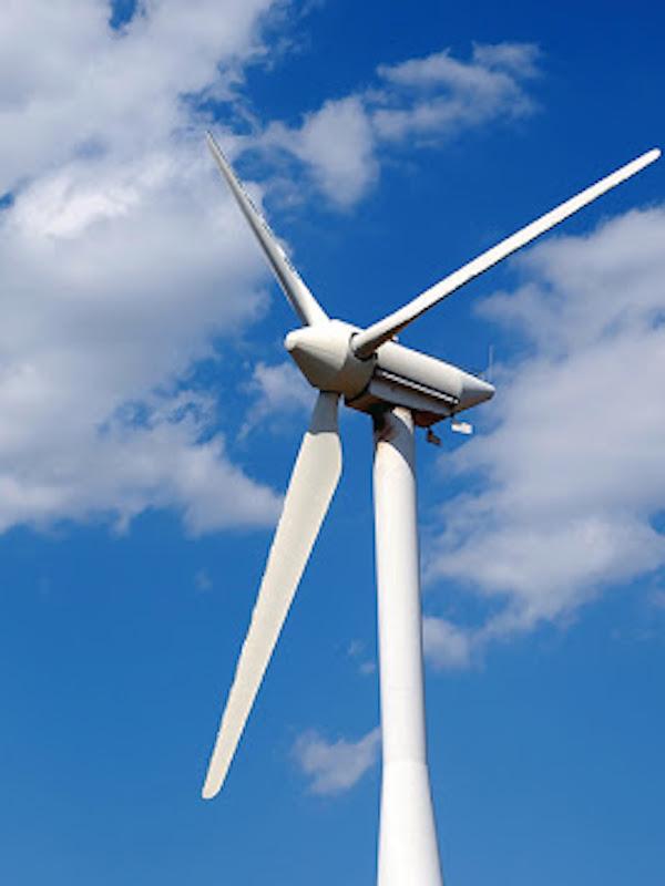 COVID-19 y aportación de la energía eólica