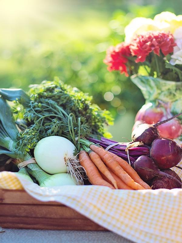 Alimentos ecológicos de Navarra a la venta on-line