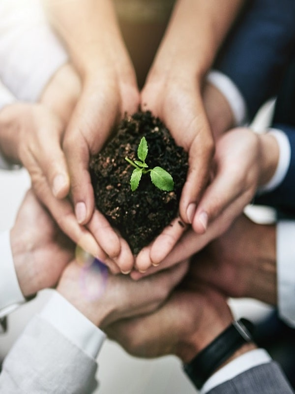 Emprendedores verdes