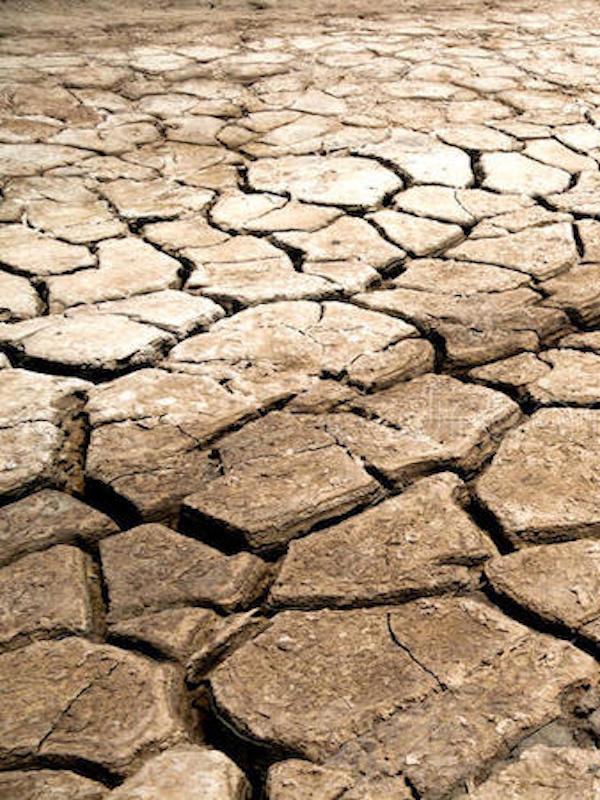 La 'crisis climática' extenderá las tierras secas y serán menos productivas