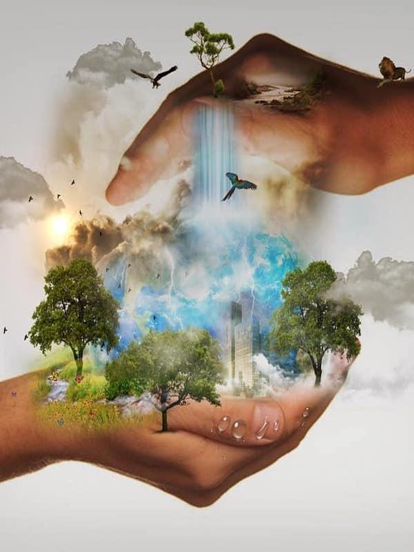 Biodiversidad o crecimiento económico ¿dónde está el punto de equilibrio?