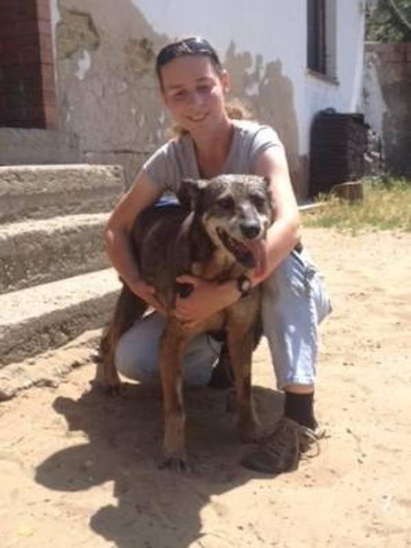 Extraordinario. Dos perros de 22 y 27 años en Hungría