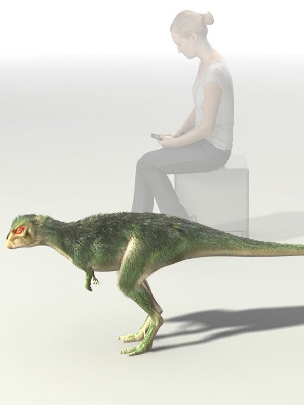 El dinosaurio que cojeaba hace 150 millones de años