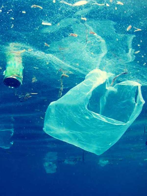 La contaminación por plasticos en el mar antártico es 'critica'
