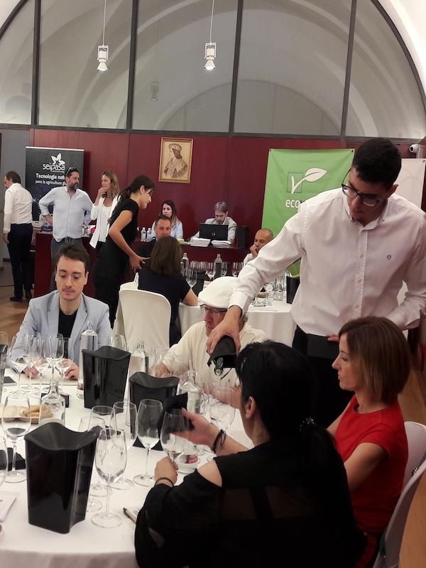 XXI Premio Internacional de Vinos Ecológicos