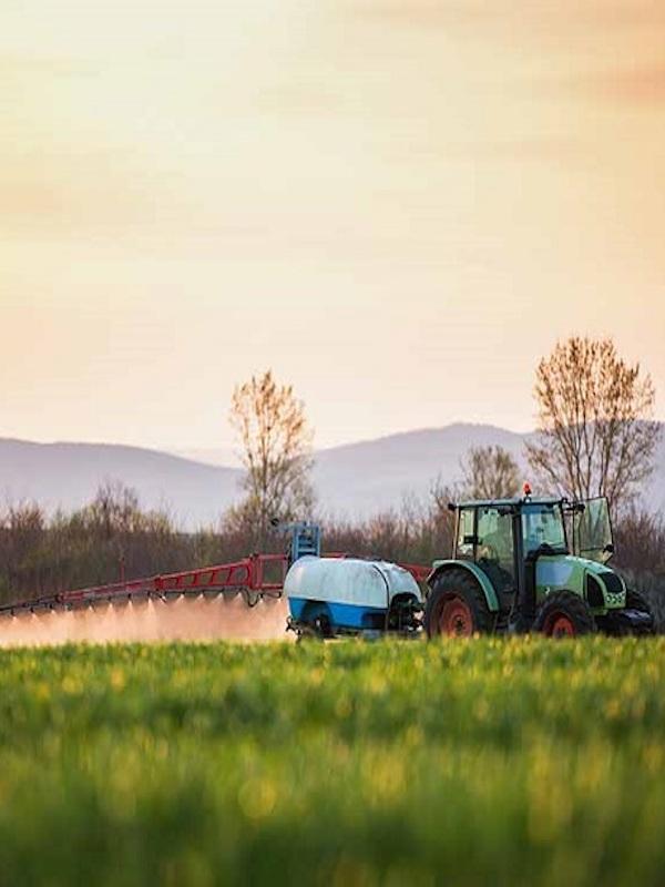 Agricultura encarga un estudio para conocer la realidad actual y el potencial de la producción balear ecológica