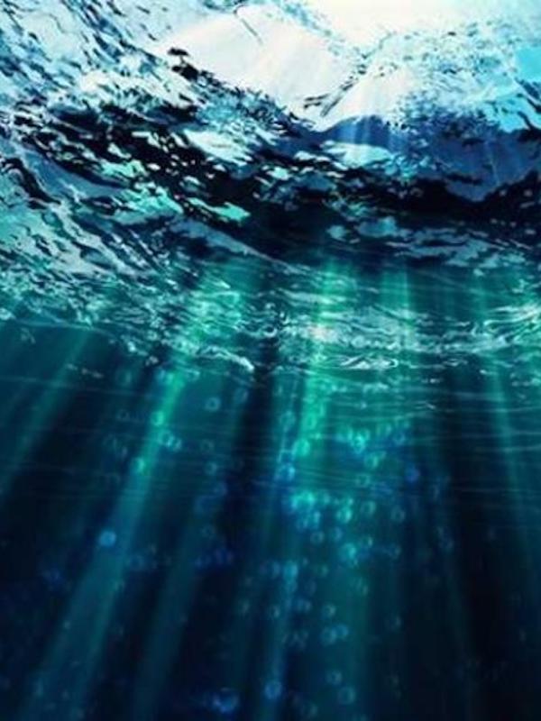La fibra óptica del fondo marino canario también detectará seísmos