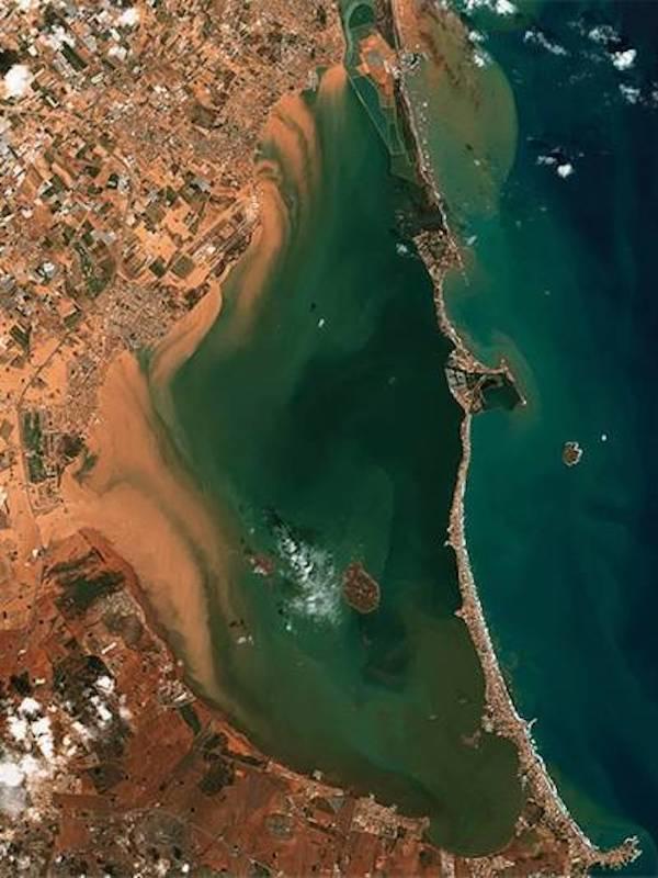Murcia ve en la reforestación la solución para minimizar escorrentías en la cuenca vertiente del Mar Menor