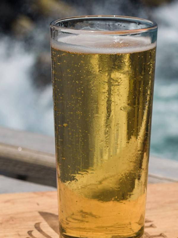 Se valida el uso de subproductos de la industria cervecera como alimento para peces