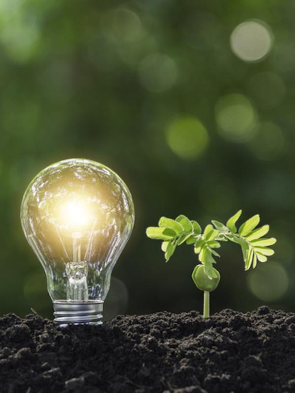 Tecnología verde para con luz solar convertir el agua y CO2 en productos químicos limpios
