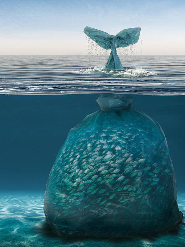 Los plásticos de los océanos son un peligro para la salud de los humanos
