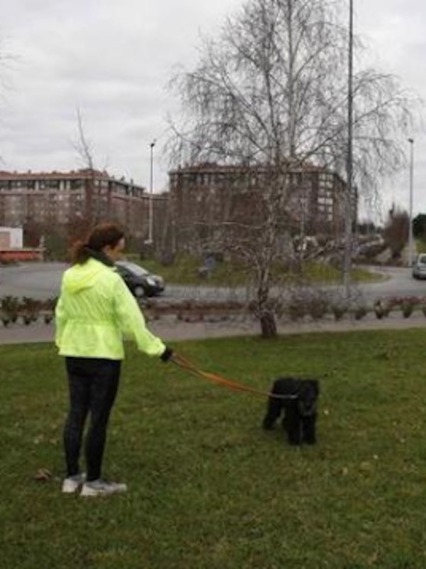 Torrelavega construirá un parque canino