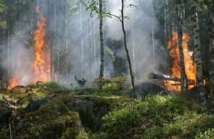 Andalucía presenta su candidatura para el proyecto Firepoctep, para la prevención y extinción de incendios forestales