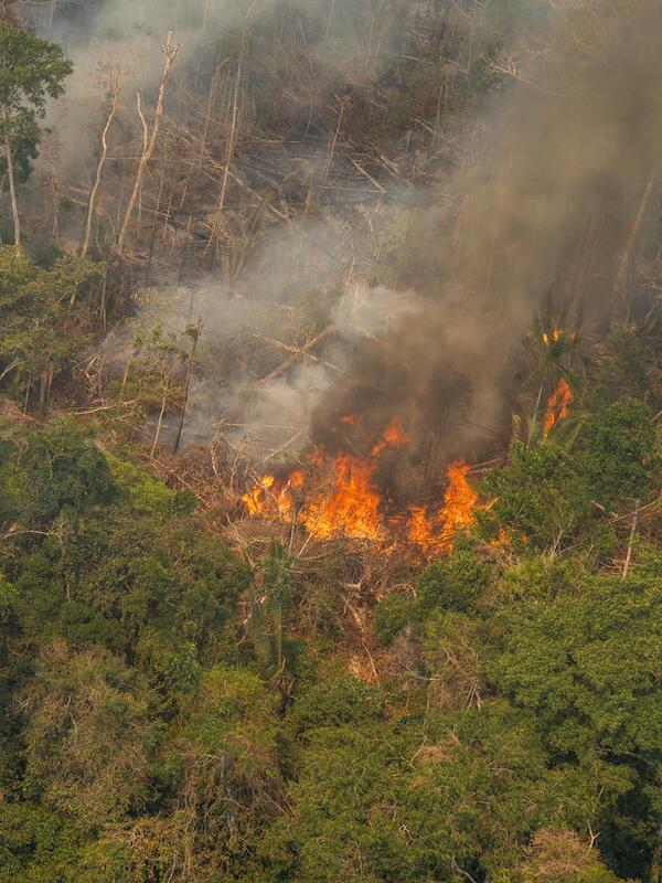 """Los incendios en la Amazonía siguen fuera de control pese a la """"moratoria"""" de Bolsonaro"""