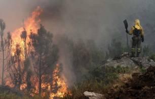La BENEMERITA intensifica la vigilancia para evitar incendios forestales en Galicia