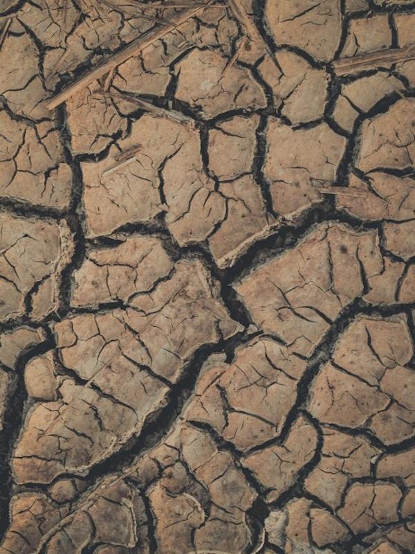 La erosión del suelo por el agua por un uso indebido de la tierra y el cambio climático es 'insostenible'