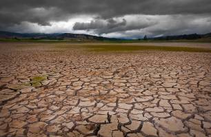 Las especies están siendo expulsadas de los trópicos por el cambio climático