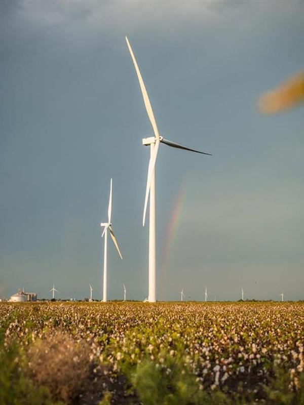 Iberdrola suministrará energía 'verde' a la farmacéutica Bayer en México de un parque eólico de 105 MW