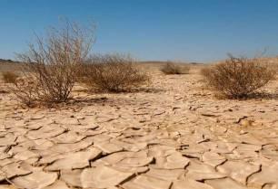 Cambio climático. La PAC es 'nula' contra el calentamiento global