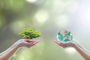 10 simples pasos para llevar un estilo de vida más sostenible