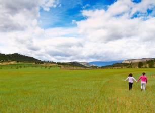 El Cantero de Letur. Agricultura ecológica, qué es y lo que no es